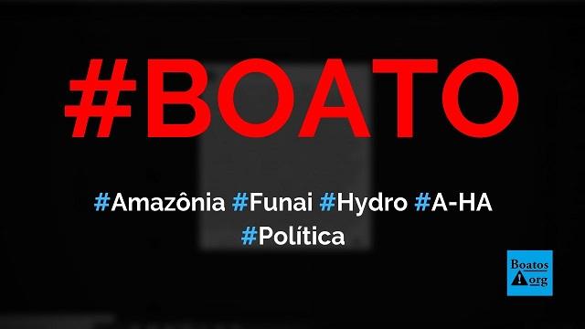 Amazônia é saqueada por Funai, índios, MST, Hydro e banda A-HA há 10 anos, diz boato (Foto: Reprodução/Facebook)