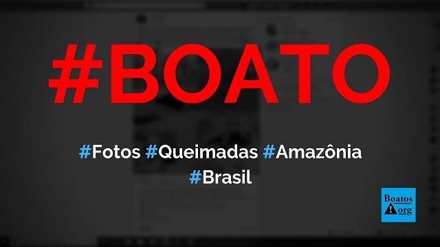 Fotos mostram animais feridos ou mortos por causa de queimadas na Amazônia, diz boato (Foto: Reprodução/Facebook)