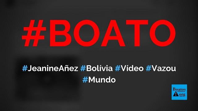 Vídeo de Jeanine Añez, presidente interina da Bolívia, com um homem vaza na internet, diz boato (Foto: Reprodução/Facebook)