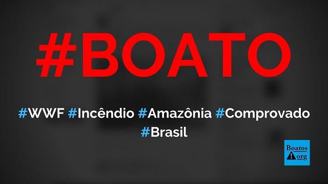 Foi confirmado que a WWF está patrocinando o fogo na Amazônia, diz boato (Foto: Reprodução/Facebook)