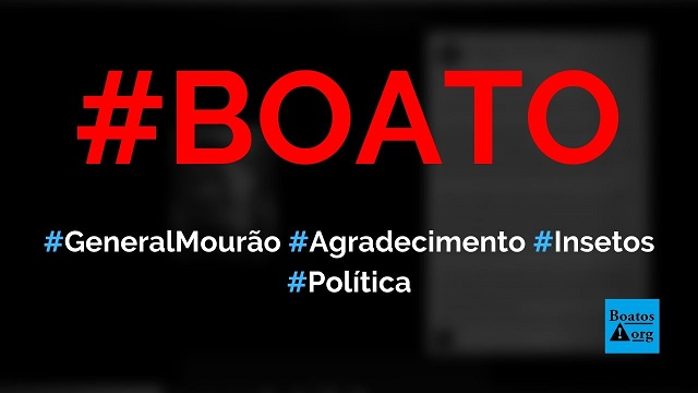 """General Mourão faz texto de agradecimento aos """"insetos do Brasil"""" por 2019, diz boato (Foto: Reprodução/Facebook)"""
