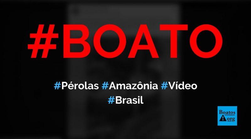 Pérolas são retiradas da Amazônia e contrabandeadas para a França, mostra vídeo, diz boato (Foto: Reprodução/Facebook)