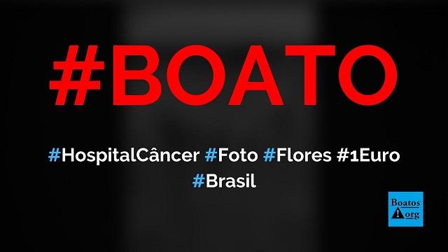 Hospital do câncer pede para você repassar foto de flores porque a cada 10 pessoas eles ganham 1 euro, diz boato (Foto: Reprodução/Facebook)
