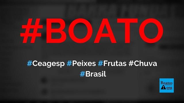 Ceagesp vai reaproveitar peixes e frutas contaminados pela chuva em SP, diz boato (Foto: Reprodução/Facebook)