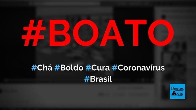Chá de folhas de boldo é a cura do coronavírus, diz boato (Foto: Reprodução/Facebook)