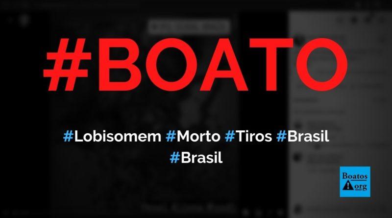 Lobisomem é morto a tiros em cidade do Brasil, mostra vídeo, diz boato (Foto: Reprodução/Facebook)