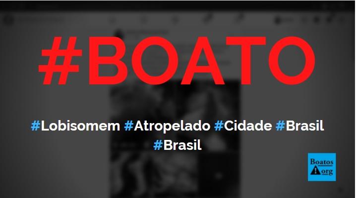 Lobisomem foi atropelado e morto em cidade no Brasil, diz boato (Foto: Reprodução/Facebook)