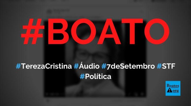 Tereza Cristina, ministra da Agricultura, grava áudio sobre 7 de setembro, greve dos caminhoneiros e intervenção militar, diz boato (Foto: Reprodução/Facebook)